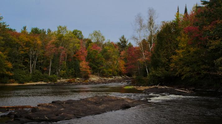 Oxtongue Rapids Park